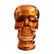 Glass skull: Bronze